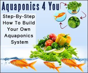 Aquaphonics for You